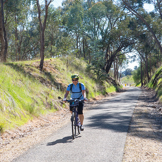 A female cyclist on a bicycle with a Mulga Tours sign on the front passes through a cutting on the sealed rail trail. Trees overhand the rail trail.