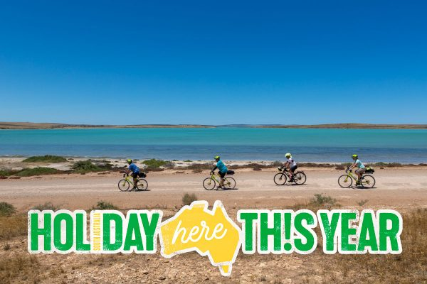 #HolidayHereThisYear logo. 4 cyclists riding on an unsealed road beside the smooth turquoise waters of Baird Bay. Treeless landscape. Brilliantly blue cloudless sky.