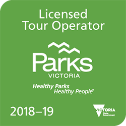 Mulga Bicycle Tours is a Parks Victoria Licensed Tour Operator